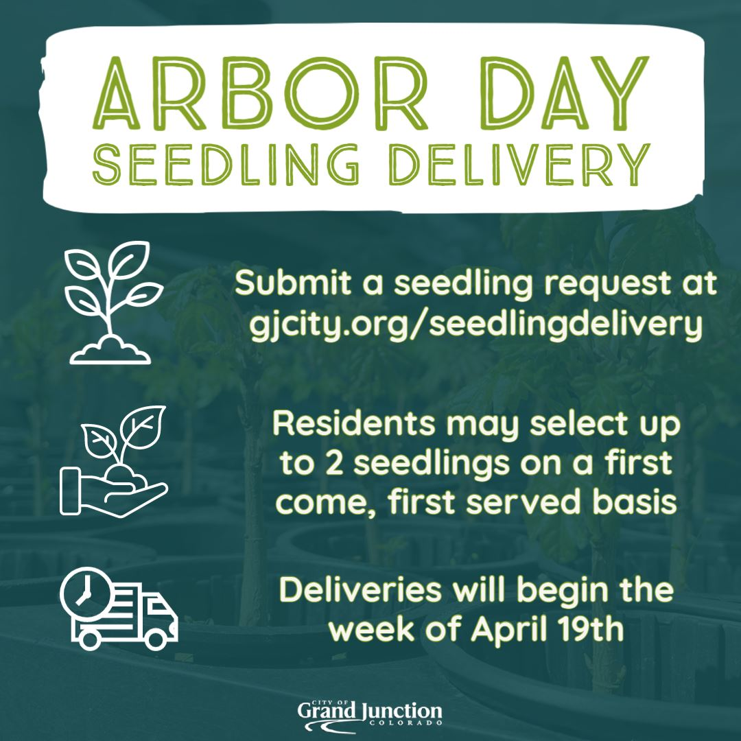 Seedling Delivery